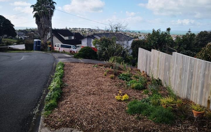 Louise Burnie's berm was planted with wildflowers and fruit trees, but has had to be pulled up after a warning from Auckland Transport.