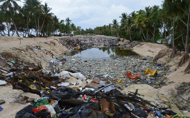 Photo looking down rectangular rubbish dump with palms on either side
