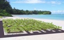 Artist's impression of proposed living artwork to be constructed in Tuvalu using mangrove plants arranged in the form of a giant QR barcode.