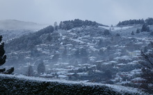 Snow blankets Dunedin's North East Valley.