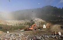 Landfill with a digger and seagulls