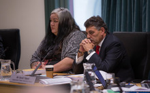 Liane Ngamane and David Taipari, Independent Maori Statutory Board.
