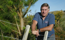 Ex-All Black Colin Meads at his farm in Te Kuiti as he stands beside the Pine Tree that grows on his property, 15 May, 2002