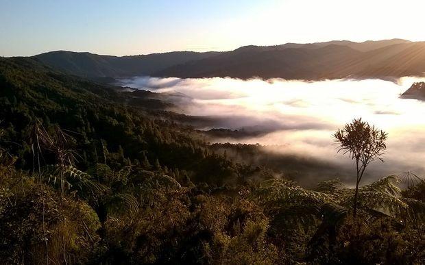 The Hunua Ranges