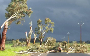 All of South Australia was left without power on Wednesday after high winds hit the state.