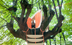 Jacob Dench's suspended treehouse