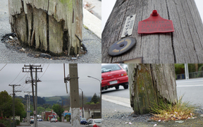 Thousands of rotting power poles are due for replacement in Otago.
