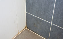 Mildew and black mold on the walls of a house (file)