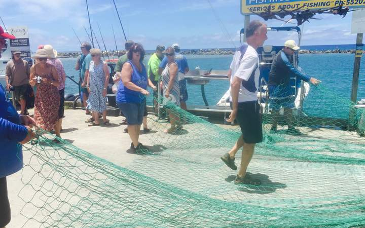 Unraveling the huge net on the marina wharf in Rarotonga proved impossible.