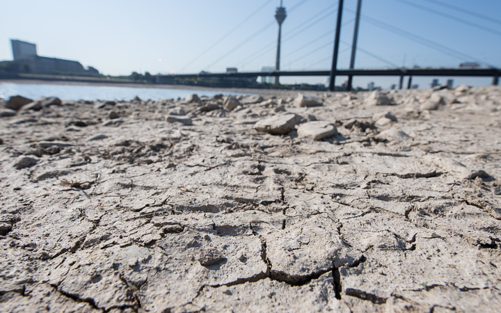 The cracked earth on the dried up banks of the river Rhine in Duesseldorf, Germany, last month.