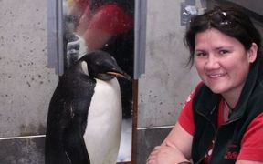 Wildlife veterinarian Lisa Argilla with Happy Feet.