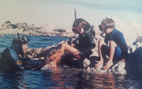 Graeme Chambers diving with his children Vanessa and Jonni Chambers.