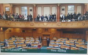 Marama Fox said MPs needed to attend treaty settlement bill readings to learn of the historic treaty breaches.