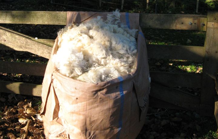 Fadge of wool