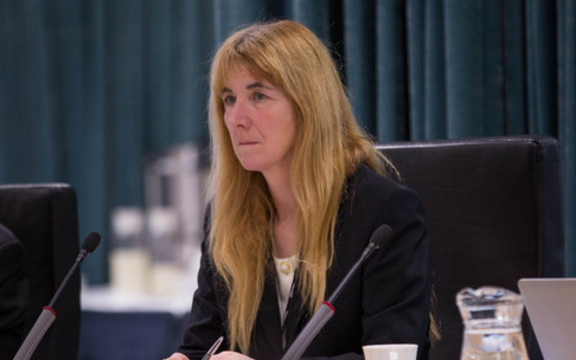 Cathy Casey at a Council meeting about the Unitary Plan. 10 August 2016.