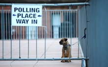 A dog waits outside a polling station in Glasgow, Scotland.