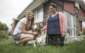 Alt text: