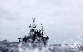 The Sea Shepherd's ship Steve Irwin.