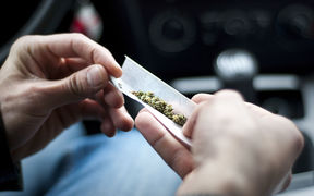 The Ministry of Health estimates about 130,000 New Zealanders use cannabis at least once a week, and in a 2015 survey one in three of them admitted driving stoned.