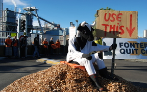Protesters donned costumes at Fonterra's Clandeboye plant in South Canterbury.