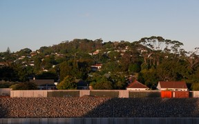For 60 years the mountain on my horizon: Owairaka-Mt Albert
