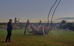 Giant Weta at Kiwiburn 2017