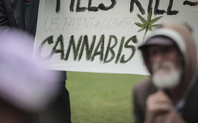 Members of Parliaments, lobists and supports gathered outside Parliament with petition to legalise cannabis, 17,000 people signed the petition.