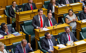 The newly elected Labour MP for Mt Roskill Michael Wood gives his maiden speech to Parliament on Wednesday 8 February 2017.