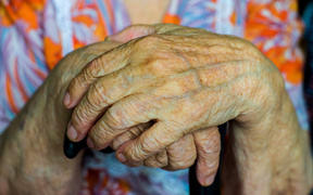 an elderly woman's hands