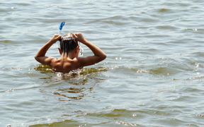 A child in a snorkel and mask peers into a river while swimming.