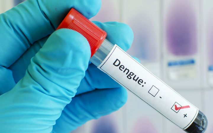 Hundreds affected by dengue in Palau