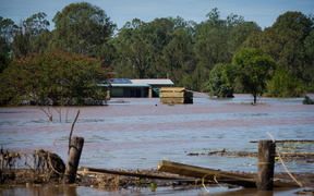 Logan River, near Logan city south of Brisbane, remained heavily flooded on Saturday after peaking at 15m on Friday in the worst flooding in the city's history.