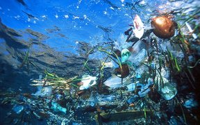 Plastic rubbish at sea.