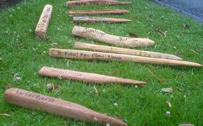 Roughly fashioned survey pegs with place names lie in the grass
