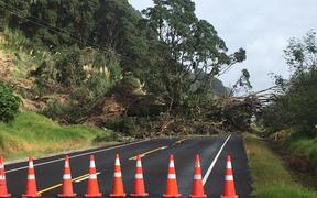 Cyclone Cook caused significant damage to power infrastructure in the central North Island.
