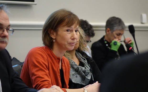 Professor Janine Hayward - the chair of the representation review - at a Dunedin City Council meeting on 15 June 2015.