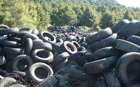 An illegal tyre dump in Waikato
