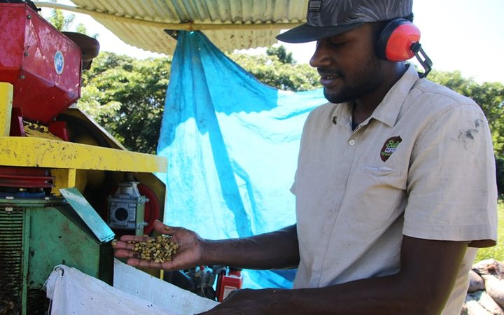 Fiji coffee being processed on site
