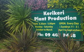 The Kerikeri nursery where myrtle rust was detected.