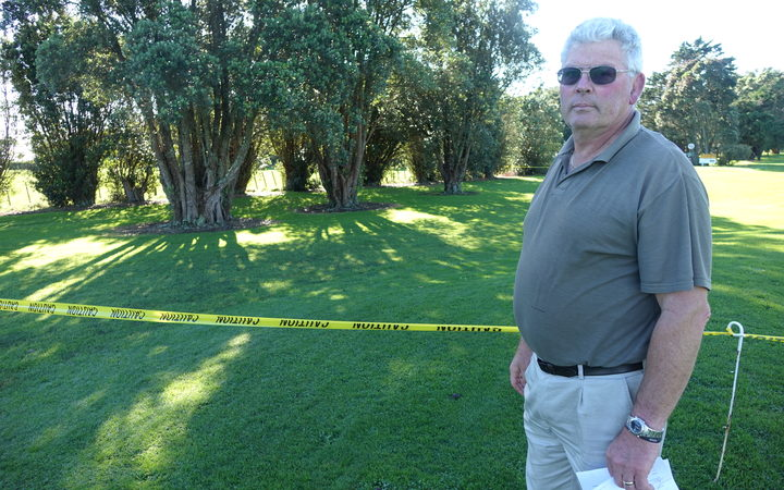 President of the Manukorihi Golf Club, David Butler, fears in a worst case scenario infected pohutukawa trees at the course may have to be removed.