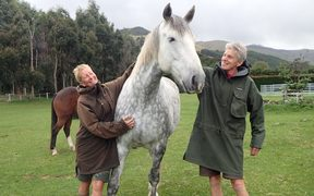 Karin Bos and Tineke van de Heide with one of their horses.