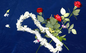 Flowers are left at Air Moorea crash site