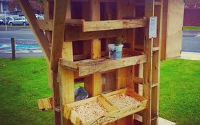 Sarah and Shaun O'Dea have started a sharing shed to encourage the townspeople of Te Awamutu to exchange goods.