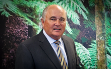 Kim Campbellsand in fronto f a wall poster of NZ ferns at Business NZ