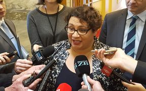 Metiria Turei talks to media about the MSD investigation.