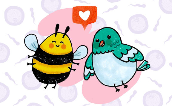 The Birds and The Bees. Illustration by Pinky Fang.