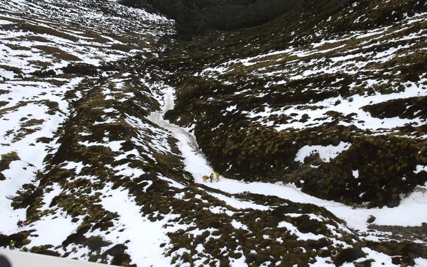 A photo released by police of the avalanche site in Fiordland National Park.