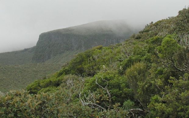 The slopes of Mount Taranaki in cloud.