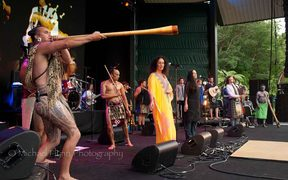 Moana and the Tribe at WOMAD 2014.