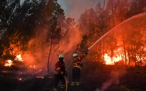 Firefighters tackle a wildfire in Macao.
